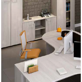 Armário dinâmico (prateleiras de 15mm) para Escritório Executive Desk 725630 - Linha M - office 25mm